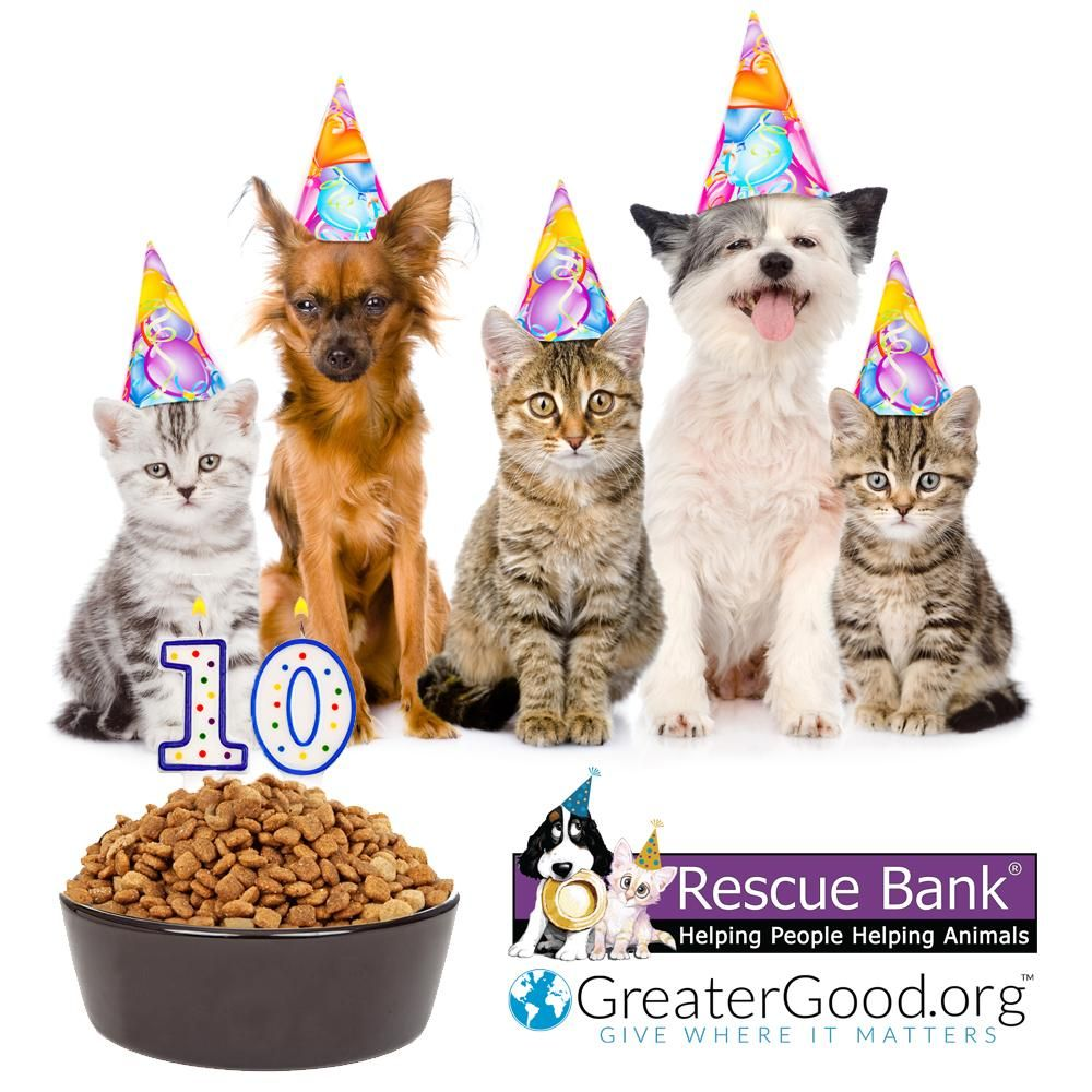 1 Million Meals for Rescue Animals Animal rescue, Animal