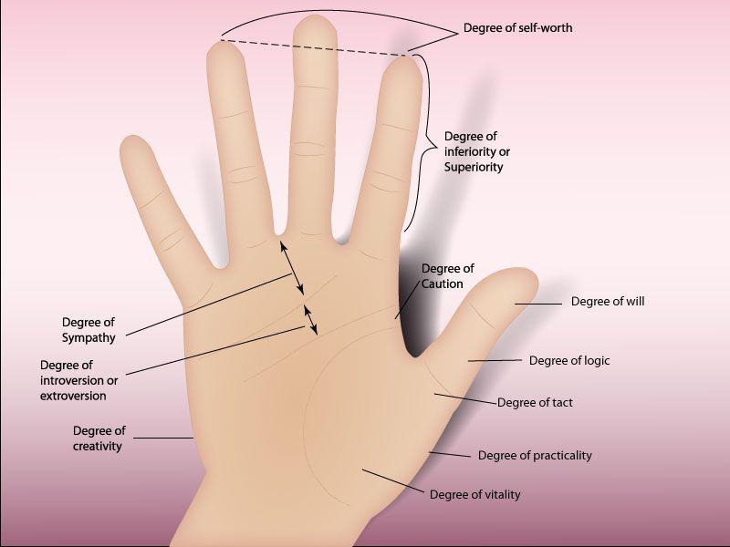 Read Palms Advanced Palm Reading Palmistry Reading