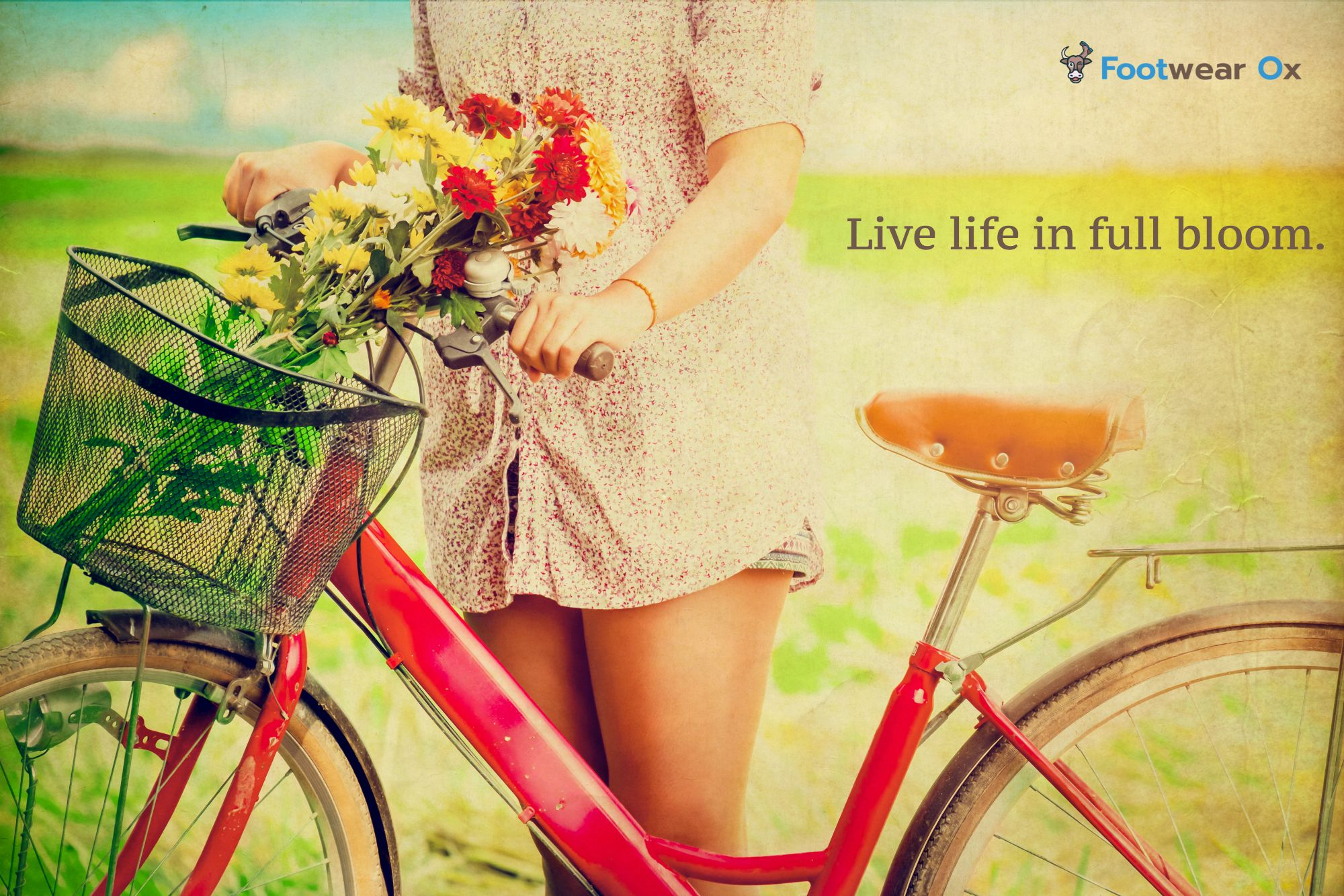 Spring Quotes Simple Live Life In Full Bloom#spring #quotes  Put Your Best Foot .
