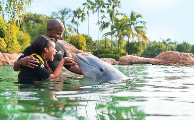 All-Inclusive Family Resort In Orlando, Florida