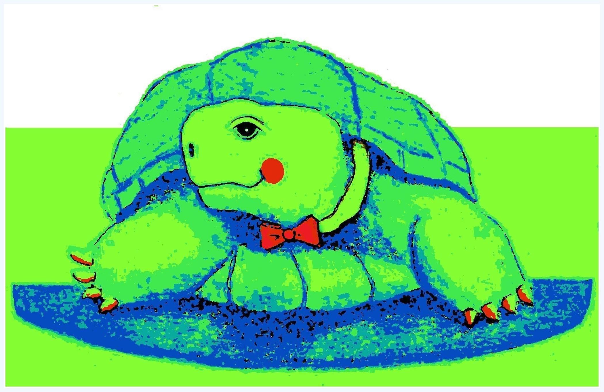Schildpad Boris Poseert Schildpad Tekening Schildpad
