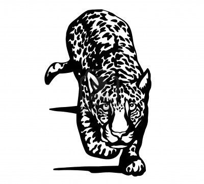 7697691-jaguar-blanco-y-negro.jpg (400×361)   tattoo   Pinterest
