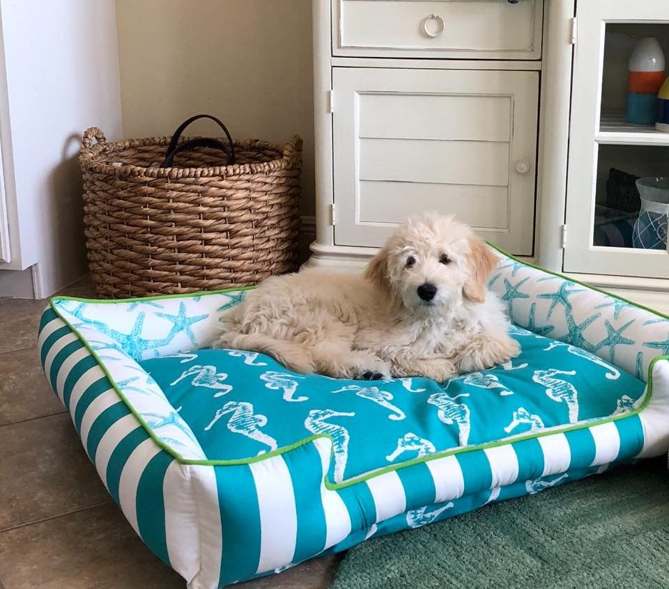 Personalized Beach Themed Pet Bed Beach House Decor