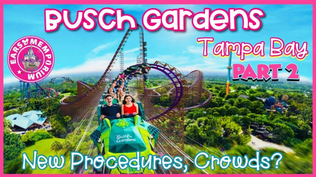 634878285b99da05f45d5b341a8117e1 - How Crowded Is Busch Gardens Tampa