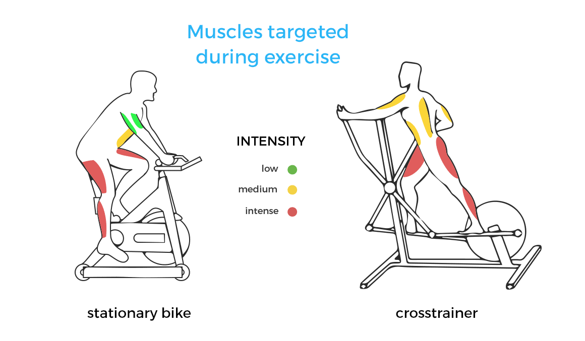 Elliptical Vs Stationary Bike Which Muscles Are Toned Treino