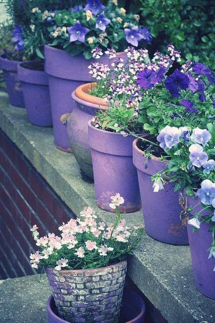 Charmant Purple Garden Pots