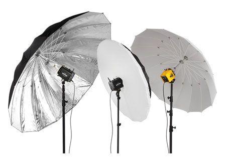 paul buff umbrellas plmset