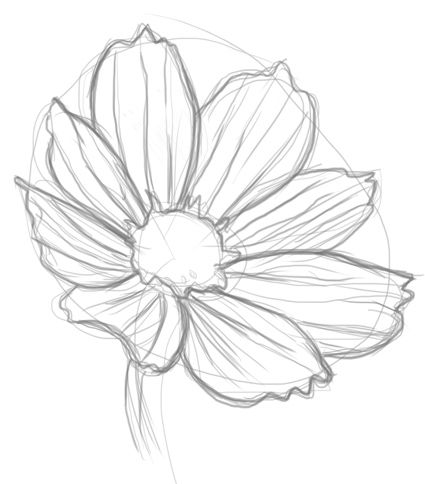 How to draw flowers simple flower drawingsimple pencil
