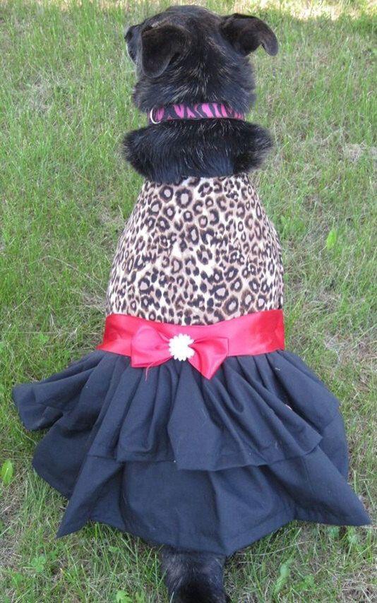 Custom leopard print pet Dress ANYSIZE on Etsy, $20.00 CAD