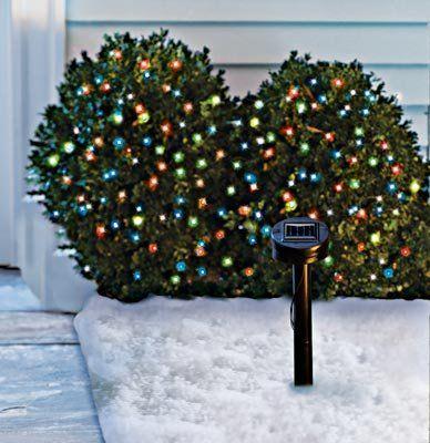 Solar Powered Christmas Lights Solar Powered Christmas Lights Christmas Lights Led Christmas Lights