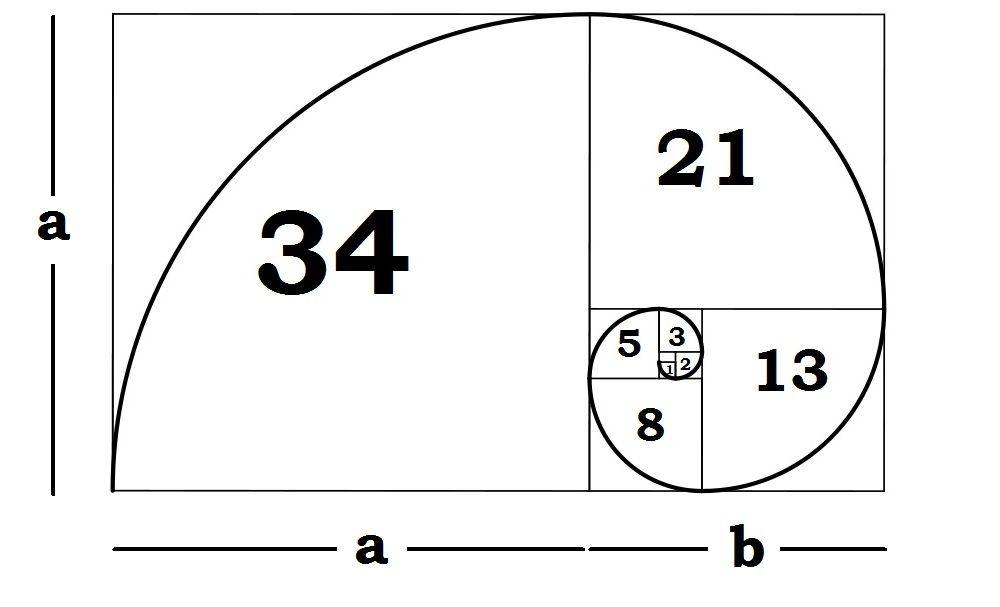 What is the Golden Ratio? Golden ratio, Infinite and Number - geometric sequence example