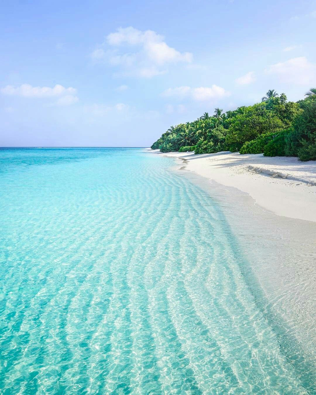 Maldives Island Beaches: Idea By Chef Jeff On Photography - Watery