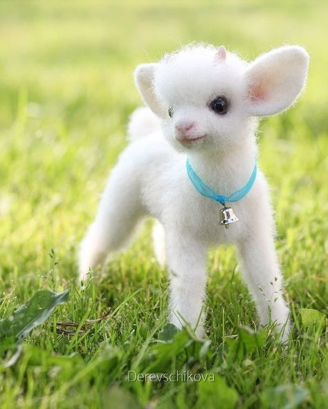 Cute Baby Animals Baby Animals Funny Baby Animals Pictures Cute Little Animals