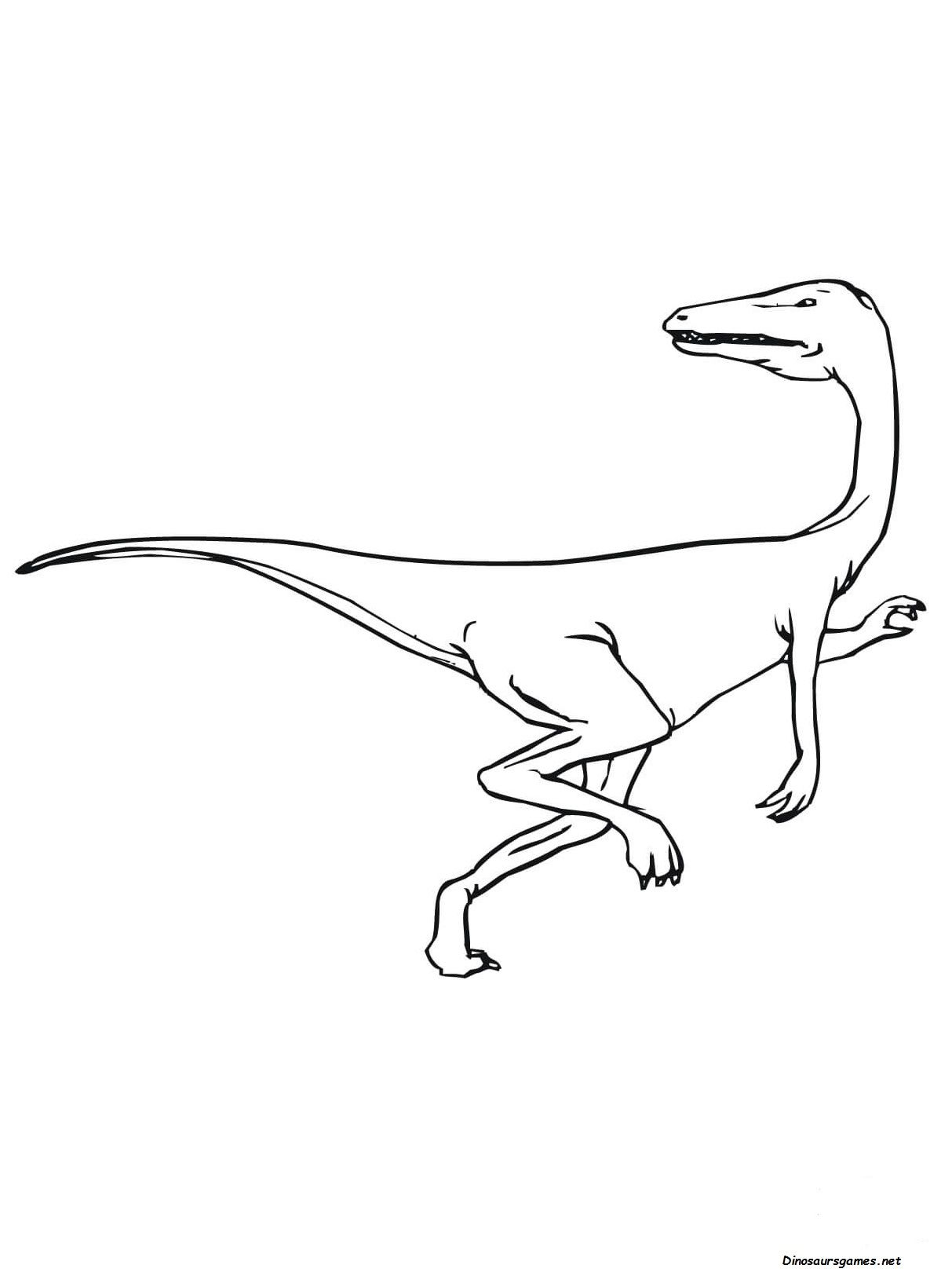 There Are Many Children Who Love The Velociraptor Dinosaurs And