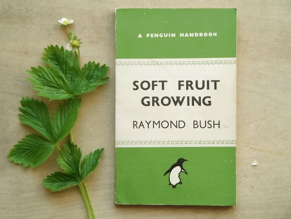Penguin Paperback 1940s Gardening Book Soft Fruit Growing Gift For