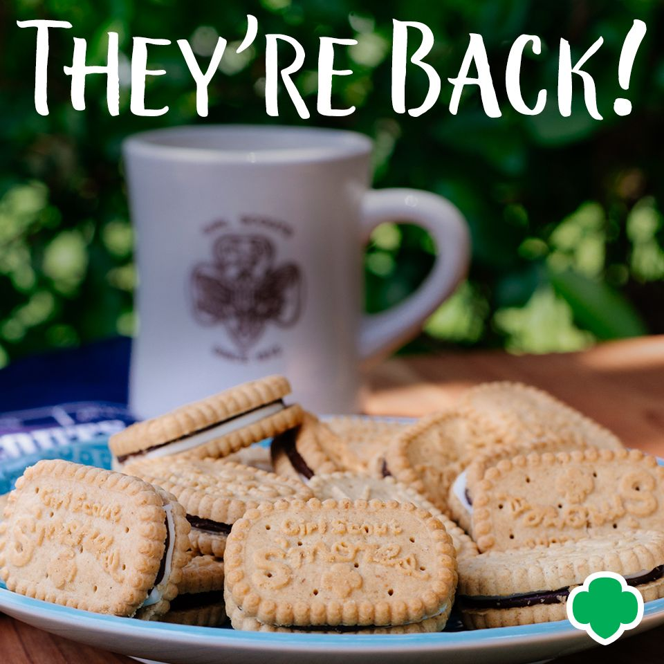 Theyre Baaaack: The Girl Scouts Smores Cookie Will Be Returning for 2019 photo