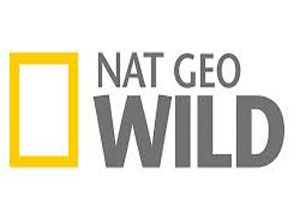 biss key national geographic wild