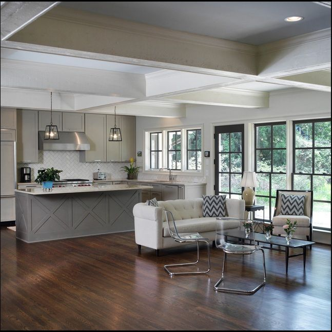 Transitional Open Plan Kitchen With Living Room Access: Contemporary Shotgun House