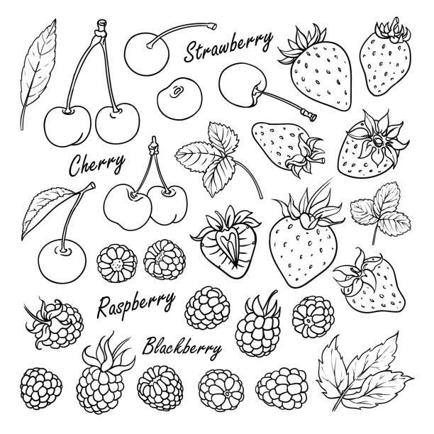 Best Doodle Illustrations Royalty Free Vector Graphics Clip Art Istock Tatuering Liten Svarta Tatueringar Liten Tatuering
