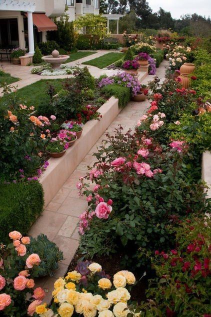 A Beautiful Rose Garden In A Slope Yard I Want My Plants To Be