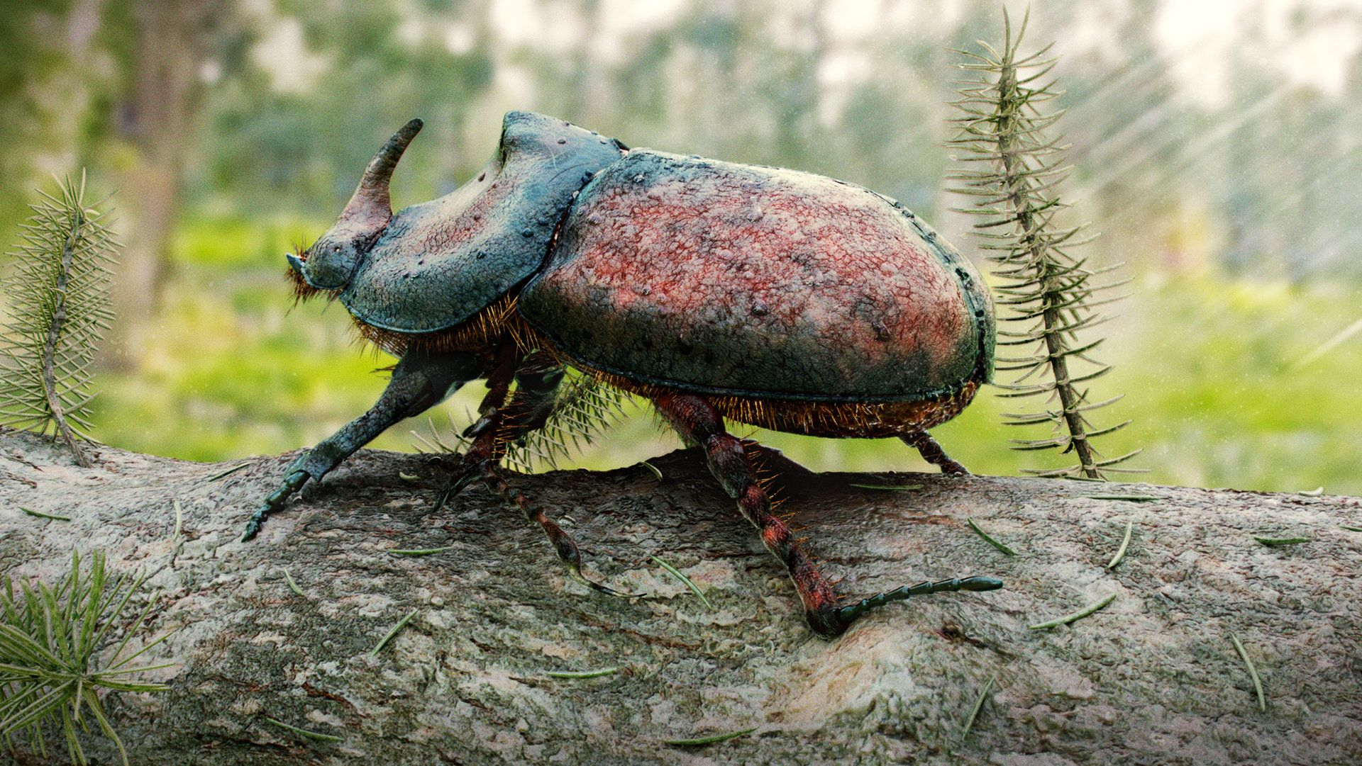 Jonathanvardstedteuropeanrhinocerosbeetlesummerg