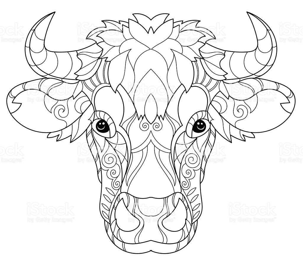 12+ Cow coloring pages pdf info