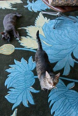 Pretty carpet