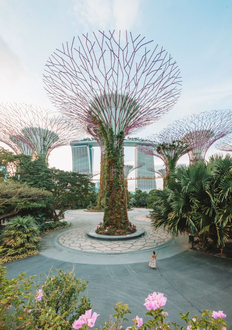 Top 16 Things To Do In Singapore Culture Of Singapore Singapore Travel Singapore Itinerary