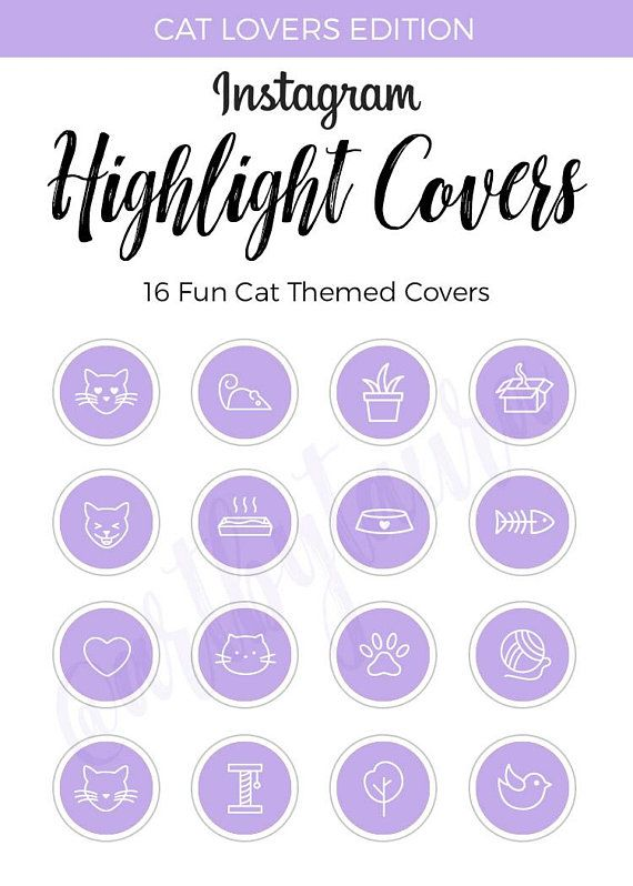 Instagram Highlight Covers | Cat Edition | Purple ...