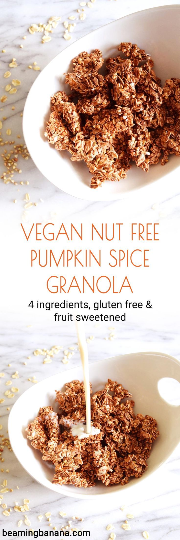 Vegan Nut Free Pumpkin Spice Granola