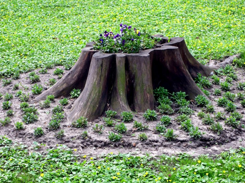 Outdoor tree stump decorating ideas projects to try for Tree decorations for garden