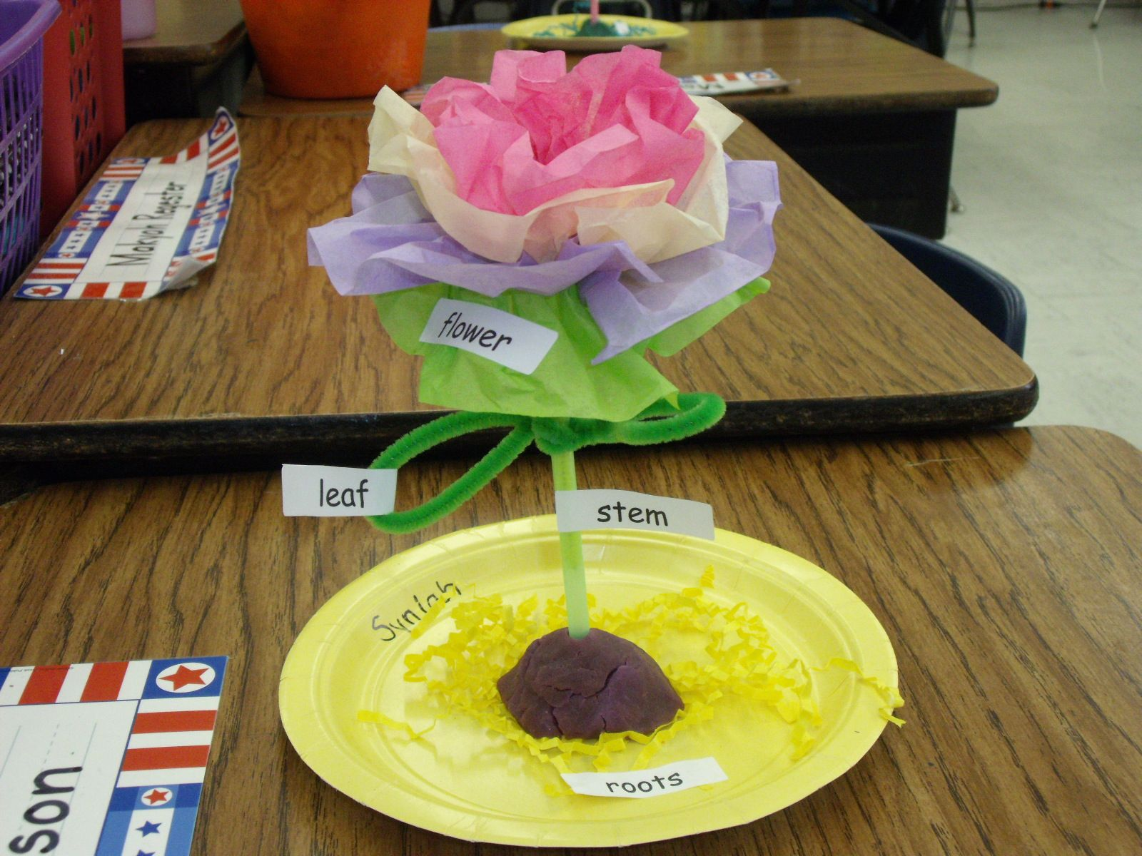 3D plant model made with pipe cleaners, tissue paper, a