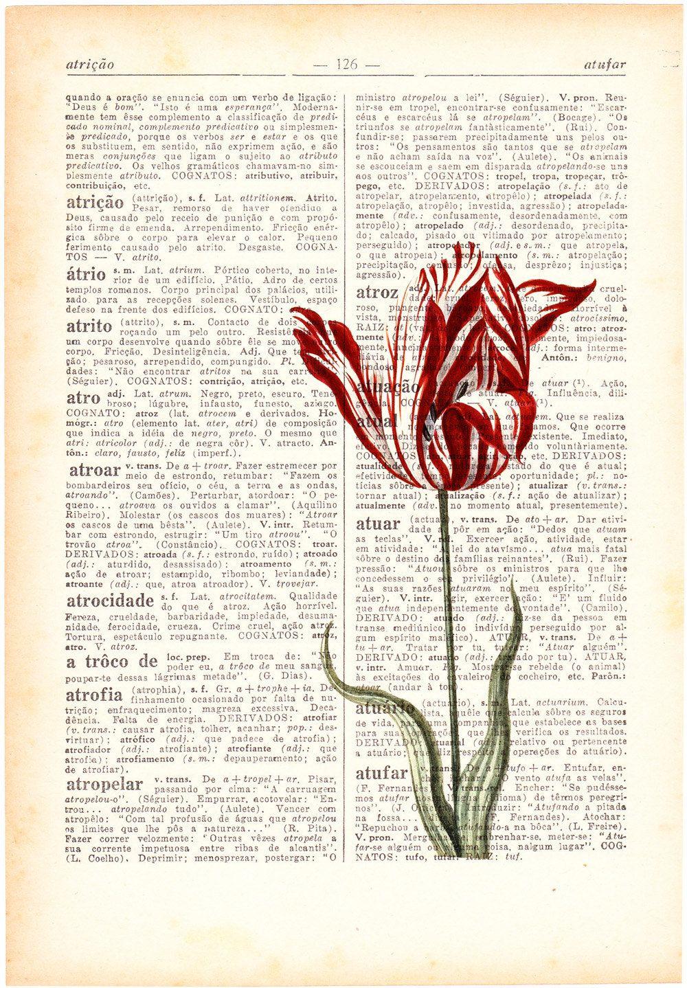 Wall Art Vintage Botanical Illustration Tulip Print On Vintage Book Botanical Illustration Vintage Botanical Illustration Botanical Prints