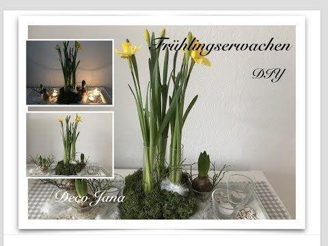 Diy Fruhling Im Haus Fruhjahr S Deko Tischdeko Deco Jana