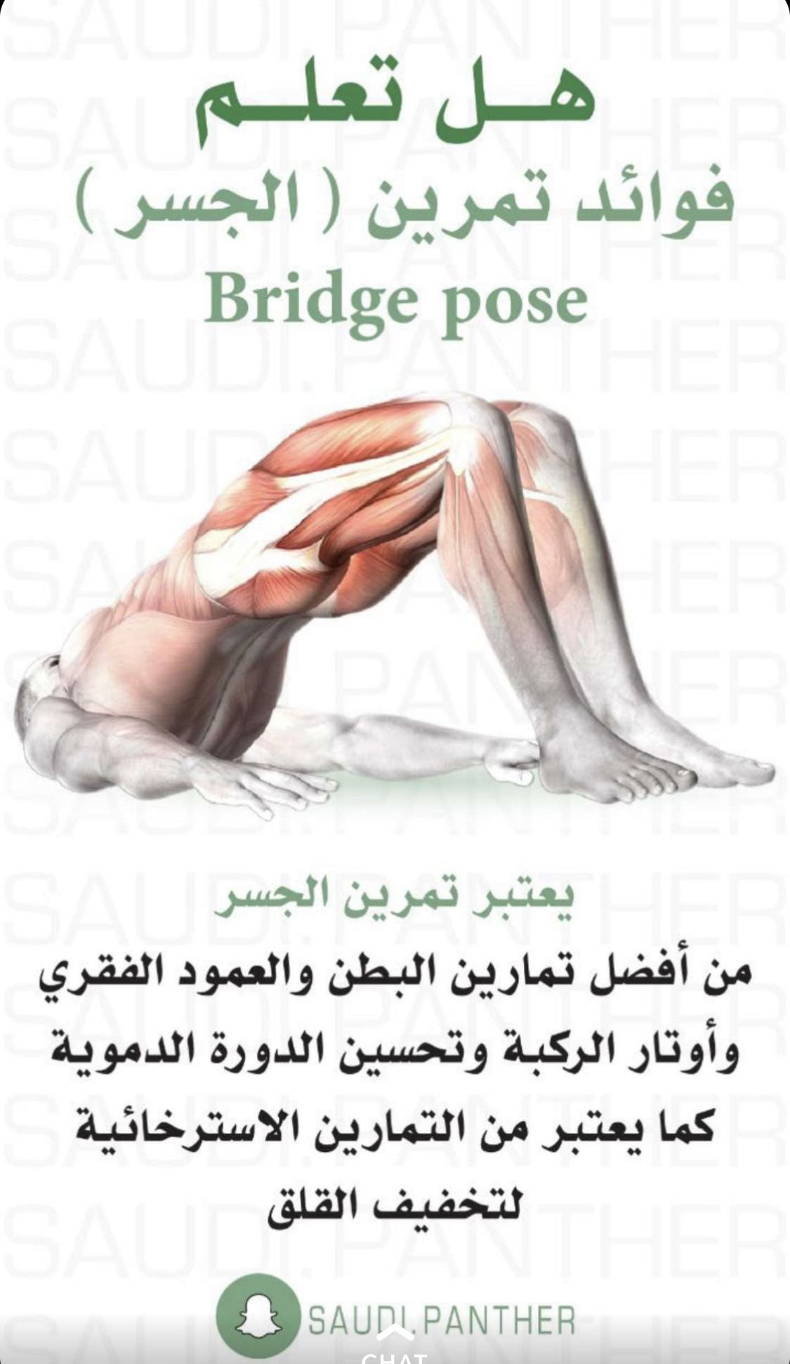 Pin By Hanen 2580 On Arabic Books Health Facts Fitness Gym Workout For Beginners Gym Workout Tips