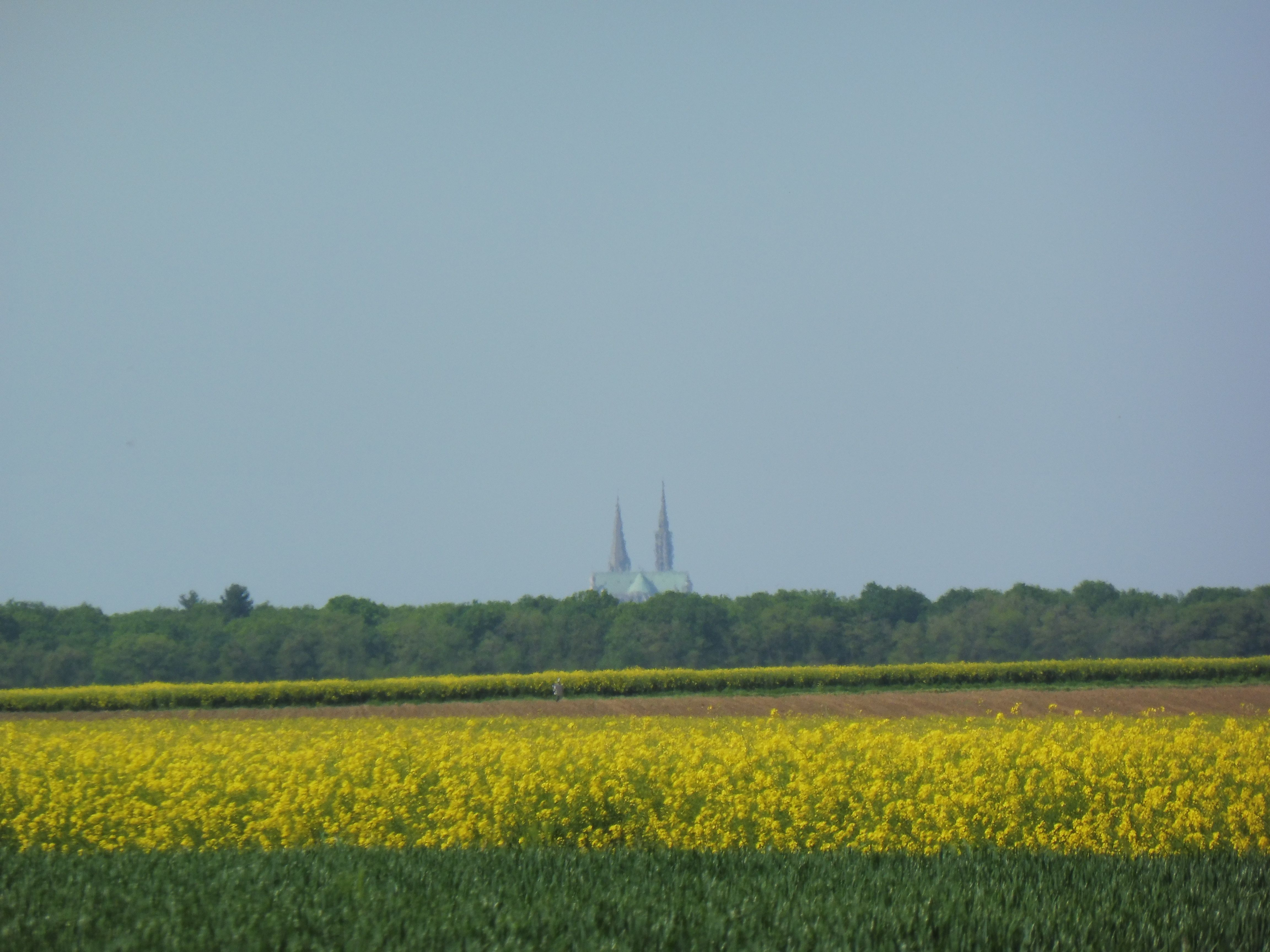 Pin Parasol Distance Maison chartres cathedral in the distance | chartres