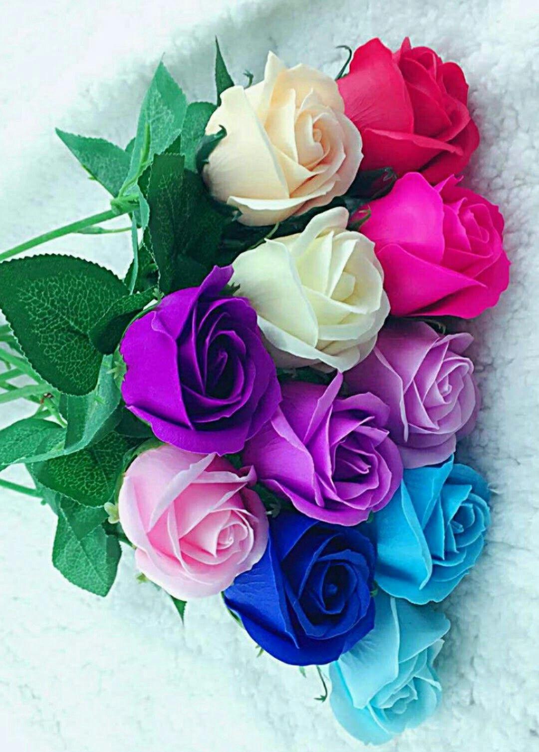 Preciosos Colores Rosas Y Flores