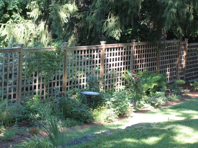 6 Foot Lattice Fence Use