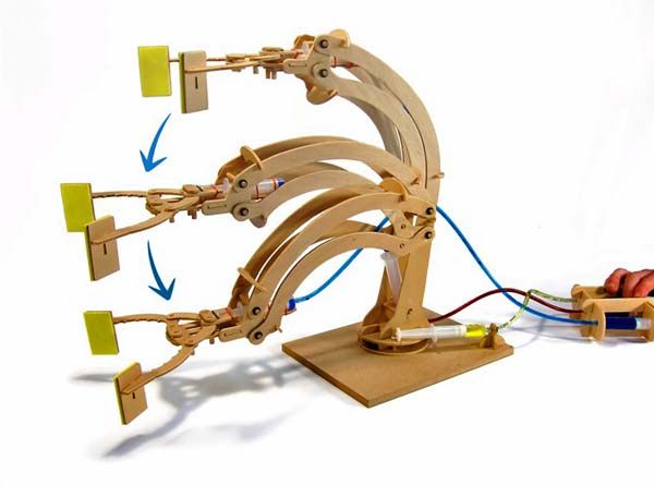 Hydraulic Arm Science Fair Projects : Build your own hydraulic robot arm this awesome kit is