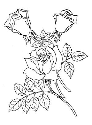 Ausmalbild Rosen Zum Ausmalen Ausmalbilder Malvorlagen Kindergarten Blumen Rosen Blumenmalvorlagen Ausmalbilder Ausmalen