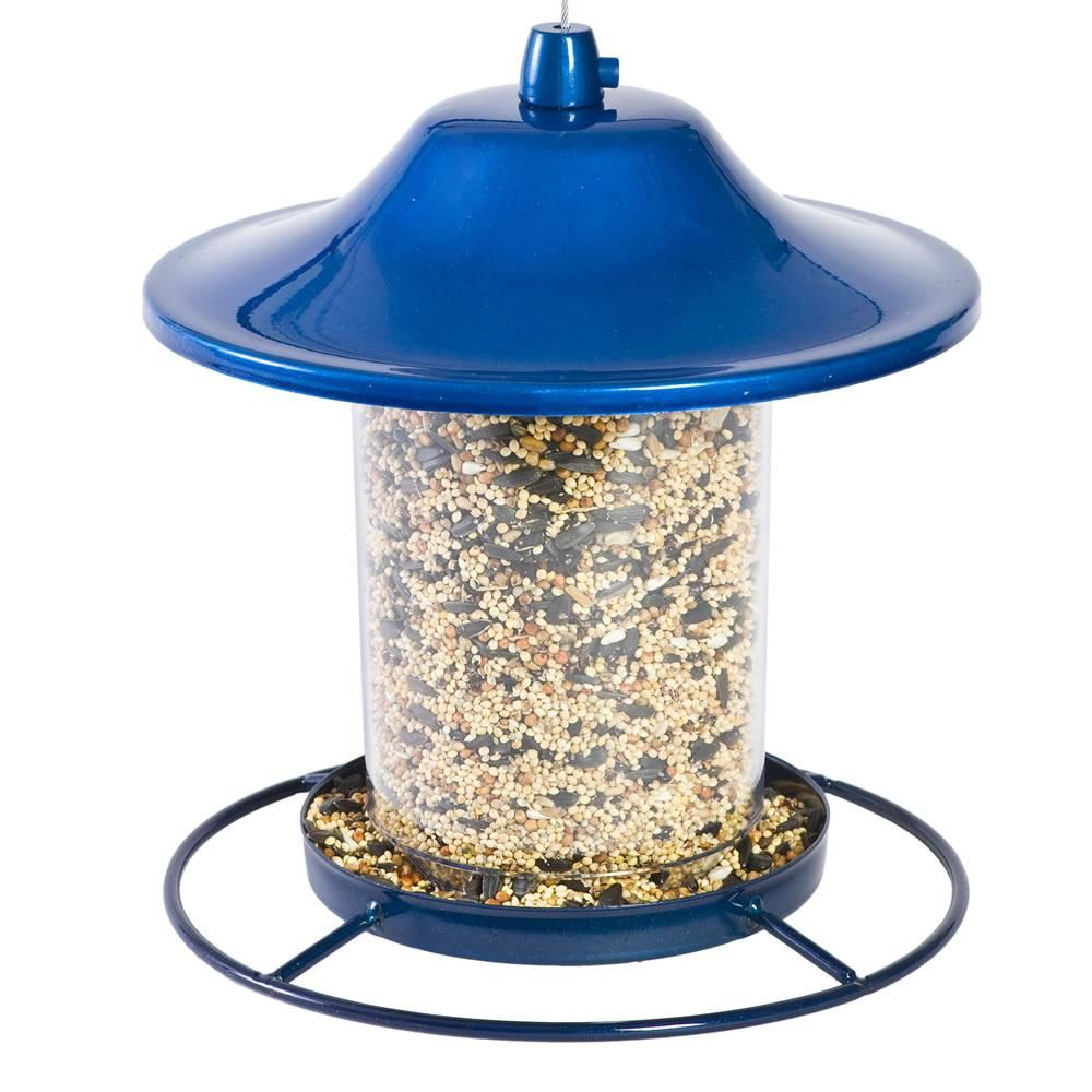Blue Sparkle Panorama Feeder