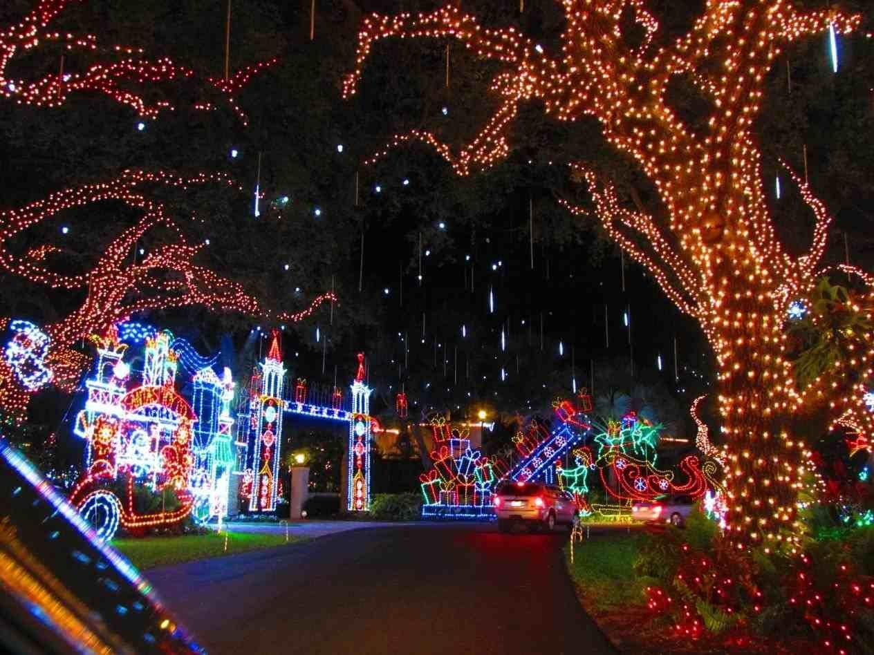 new post tropical christmas lights