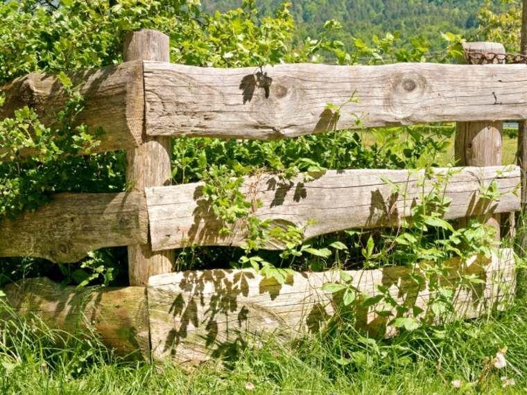cloture jardin bois pour un ext rieur tout naturel cloture jardin jardins en bois et taille. Black Bedroom Furniture Sets. Home Design Ideas