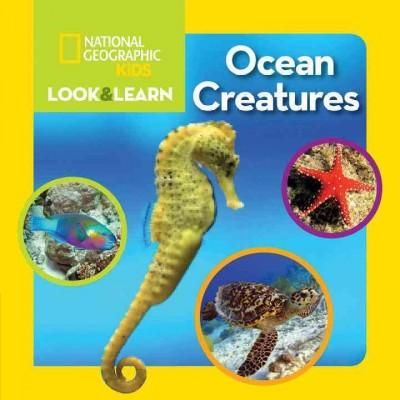 (Blue) Creatures (Board book)