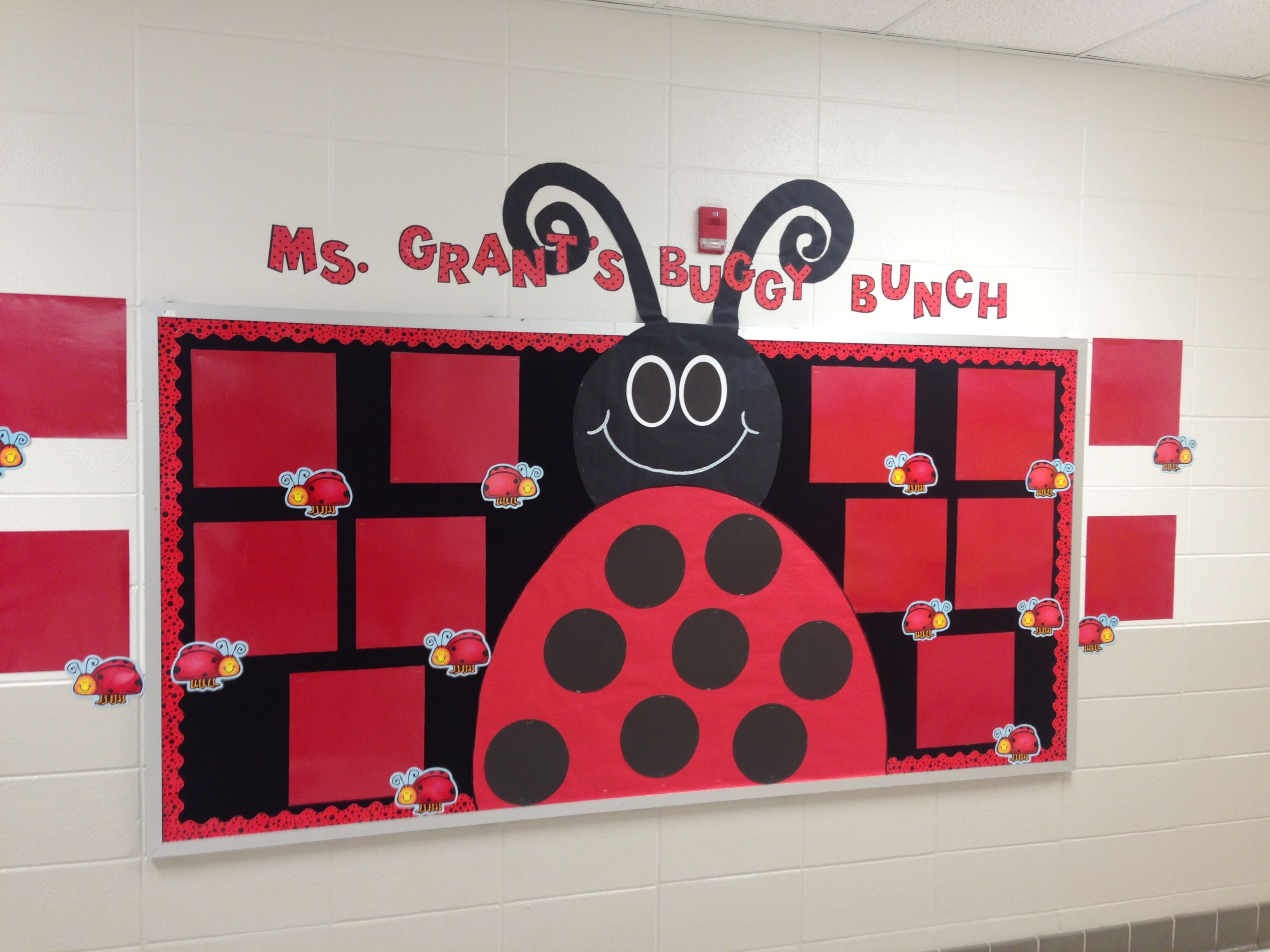 Ladybug Classroom Decor : Bulletin board to display the students work still in need