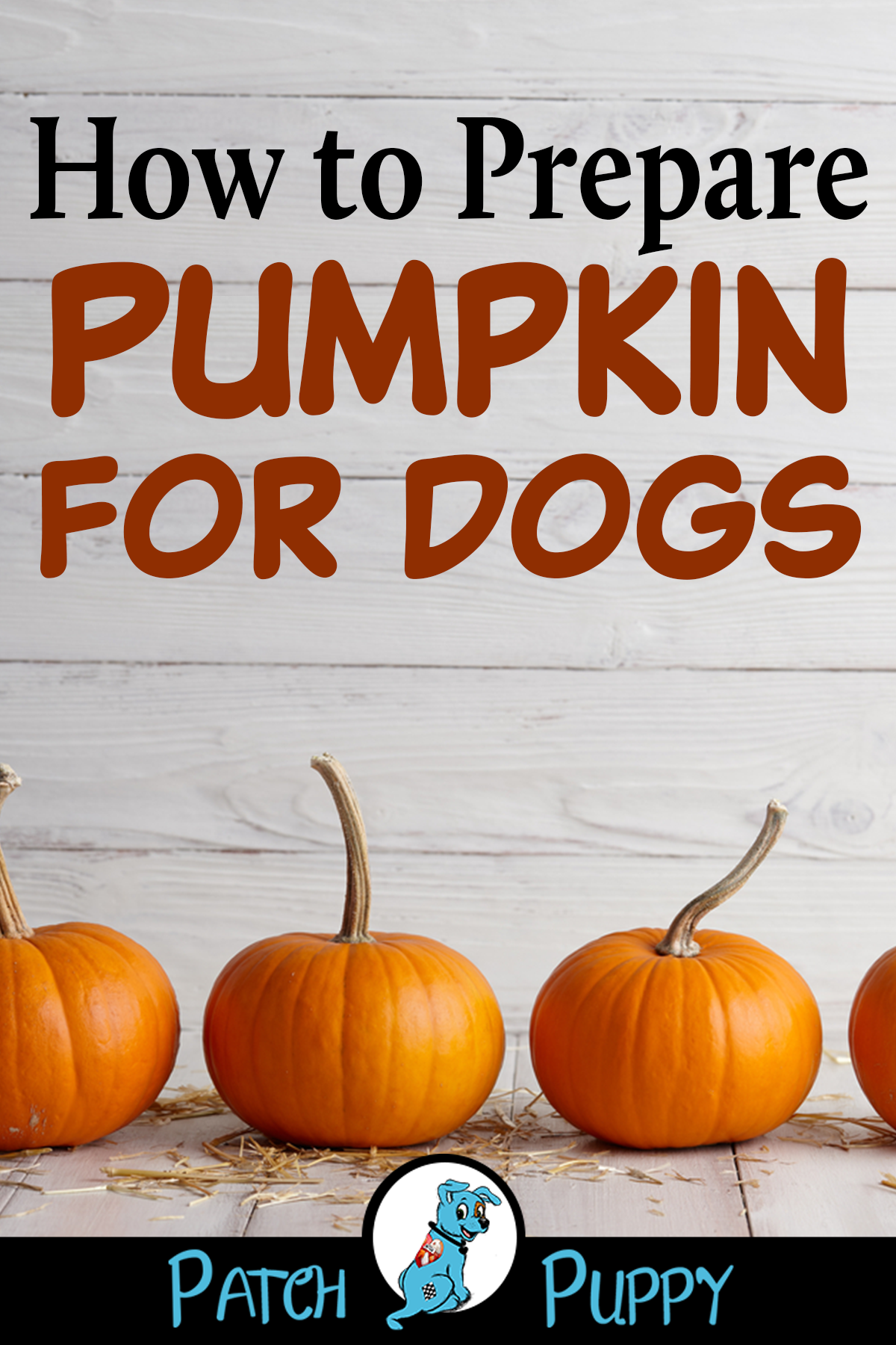 3 Pawsome Recipes Homemade Pumpkin Pupcakes For Dogs With Images Foods Dogs Can Eat Homemade Dog Cookies Easy Dog Treat Recipes