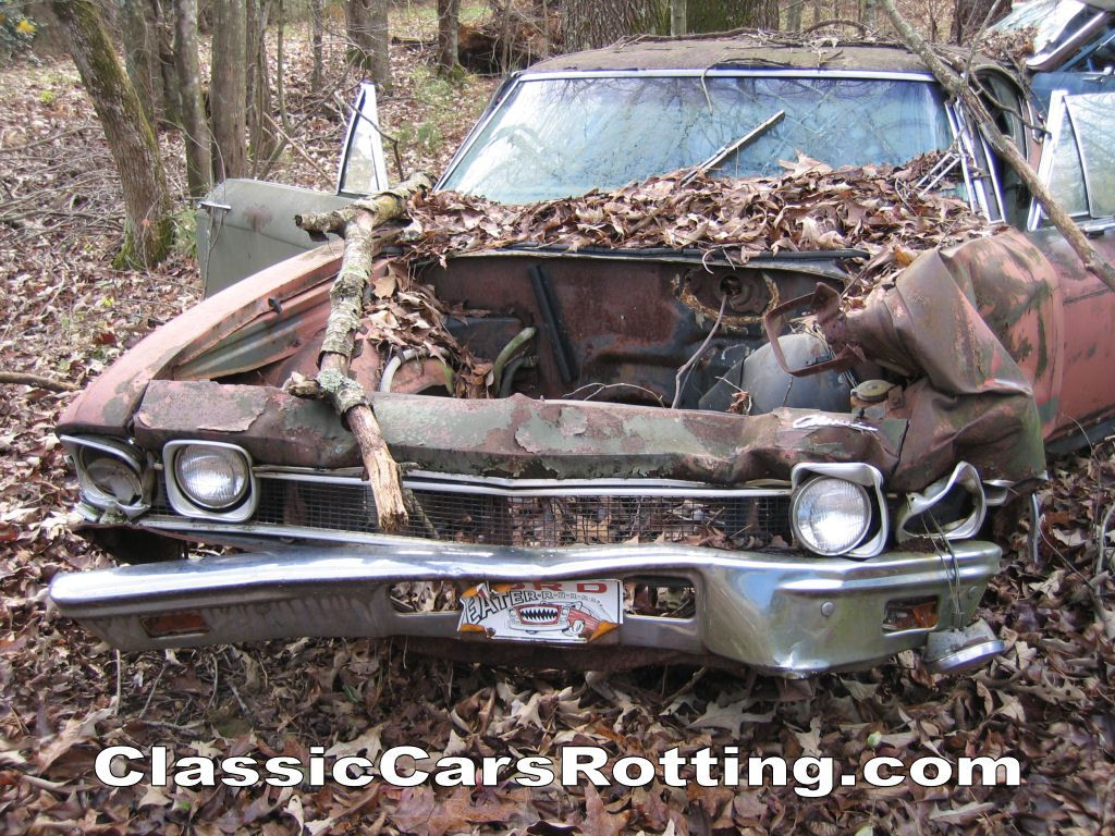 classic cars rotting | Junk Car Removal, get an offer in minutes ...