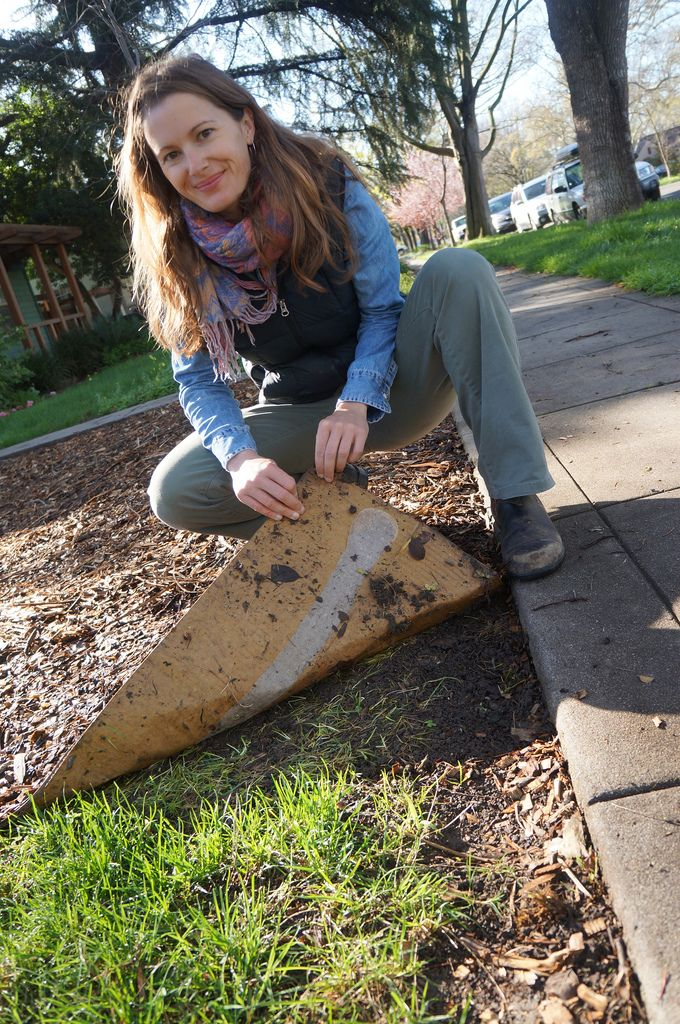 Break Up With Your Lawn Use Cardboard To Say Goodbye With No Regrets Mulch Landscaping Public Garden Garden Edging