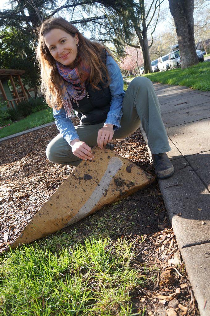 Grow YoCur Own Chamomile Lawn   Babylonstoren | Gardening Inspiration |  Pinterest | Lawn, Gardens And Yards