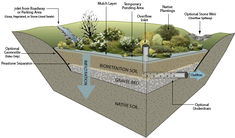 Possible Bioretention Cell Design Image Courtesy Of Geosyntec Consultants Lid Pinterest